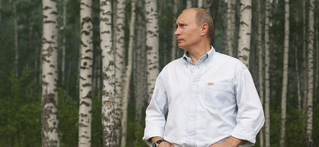 Putin amid birches